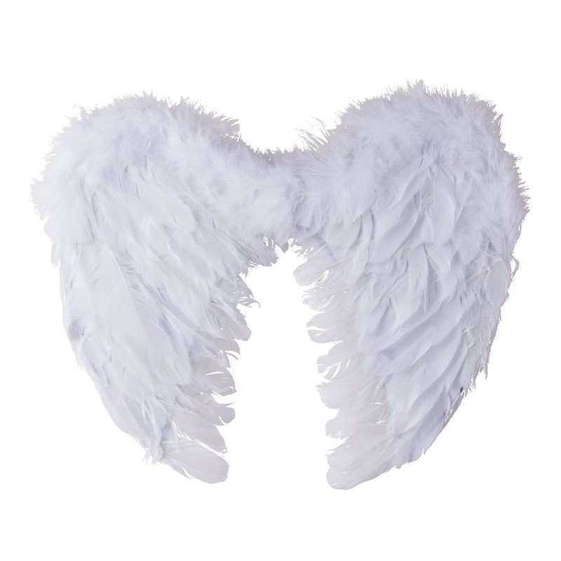 Ailes d 39 ange en plumes adulte ailes de f e sur the for Tableau aile d ange