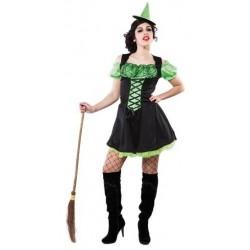 Déguisement Sorcière Verte Femme - Costume Vampire Sorcier The Duck