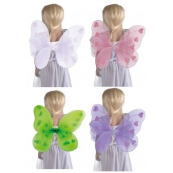 Ailes de Papillon Colorées