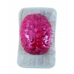 Cerveau Sanglant dans une Barquette