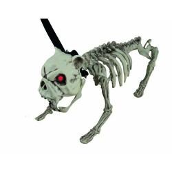 Chien Squelette Sonore Lumineux - Décoration halloween zombie squelette the duck