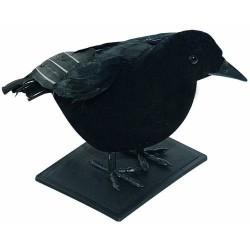 Corbeau Noir avec plumes