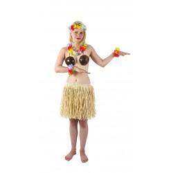 Soutien-Gorge en Noix de Coco Femme - Déguisement hawai carnaval the duck