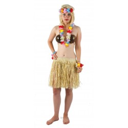 Set Hawaiian Adulte - Déguisement hawaïen adulte carnaval the duck