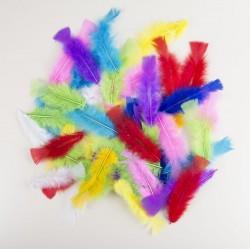 50 Plumes Multicolore Indien - Décoration Indien Soirée Western The Duck
